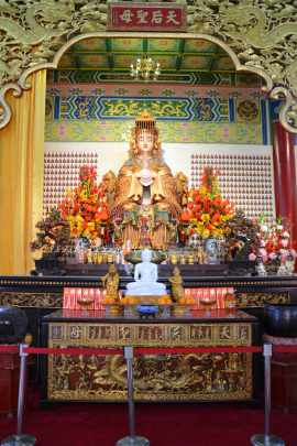 th temple24