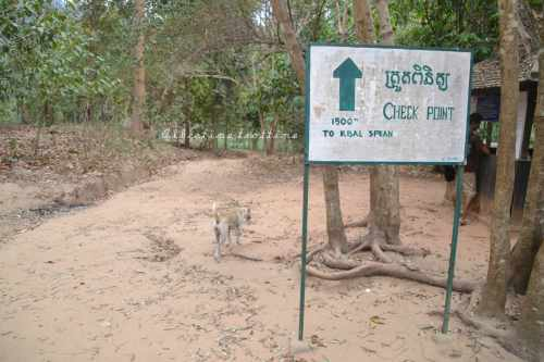 phnom kulen20