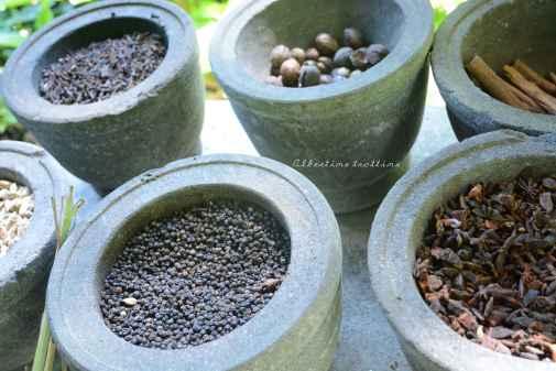 spice garden6