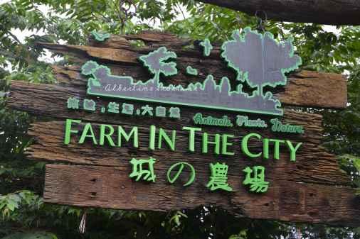 farmcity10