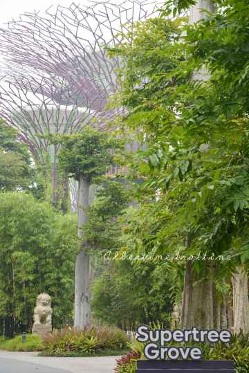 gardens bay 15