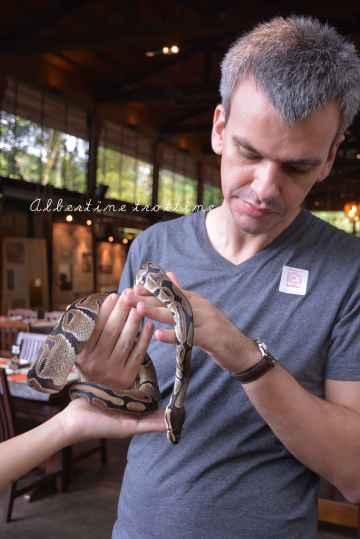 zoo singapour 3