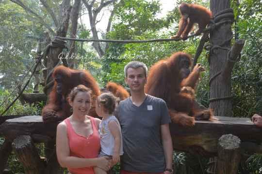 zoo singapour 5