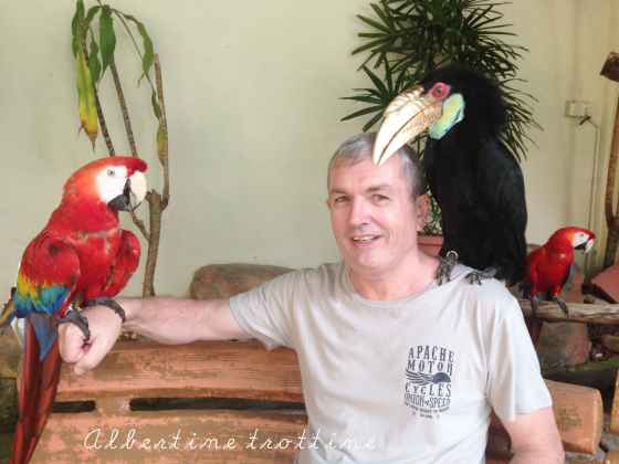 bird park avec papi 3